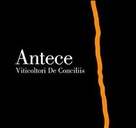 Antece