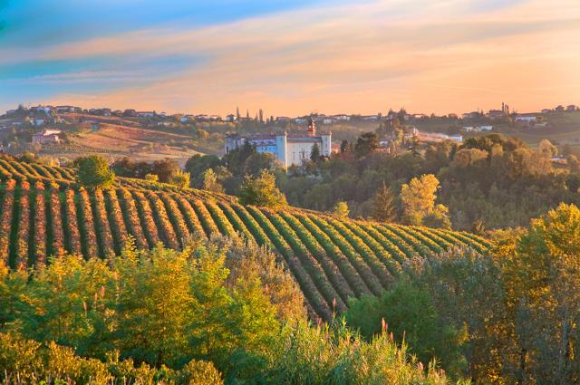 Costigliole d'Asti (Piedmont, Italy): landscape