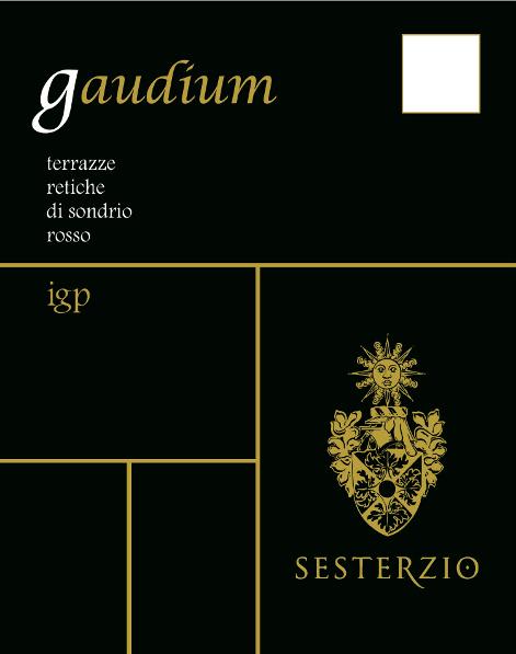 GAUDIUM BACK