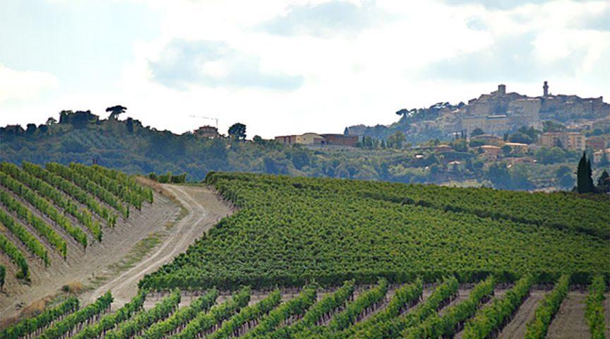 best vino nobile montepulciano